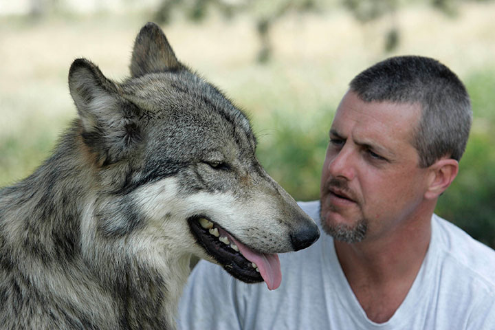 Kevin with wolf - 1
