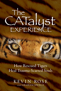 The CATalyst Experience Book Cover for Website